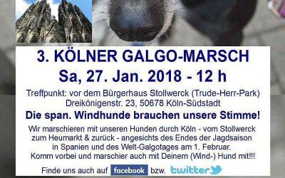 Vorankündigung: 3. Galgo-Marsch in Köln