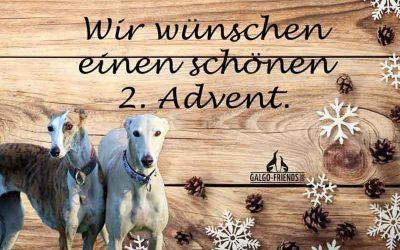 2. Advent ♥
