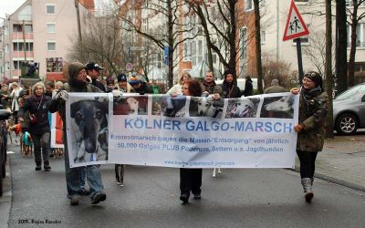 Impressionen vom 4. Kölner Galgo-Marsch