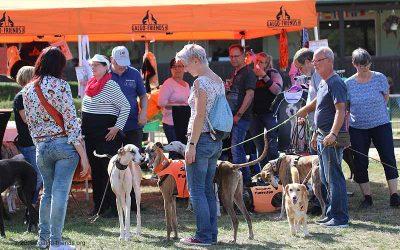 Nachlese Cita – Sommerfest mediterraner Hunde