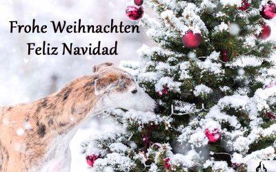 Frohe Weihnachten ♥ Feliz Navidad