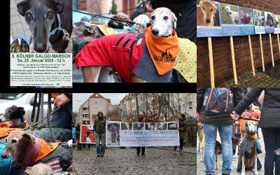 Vorankündigung: 5. Kölner Galgo-Marsch am 25. Januar 2020