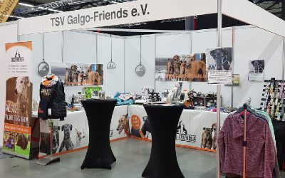 Messestand-400×250