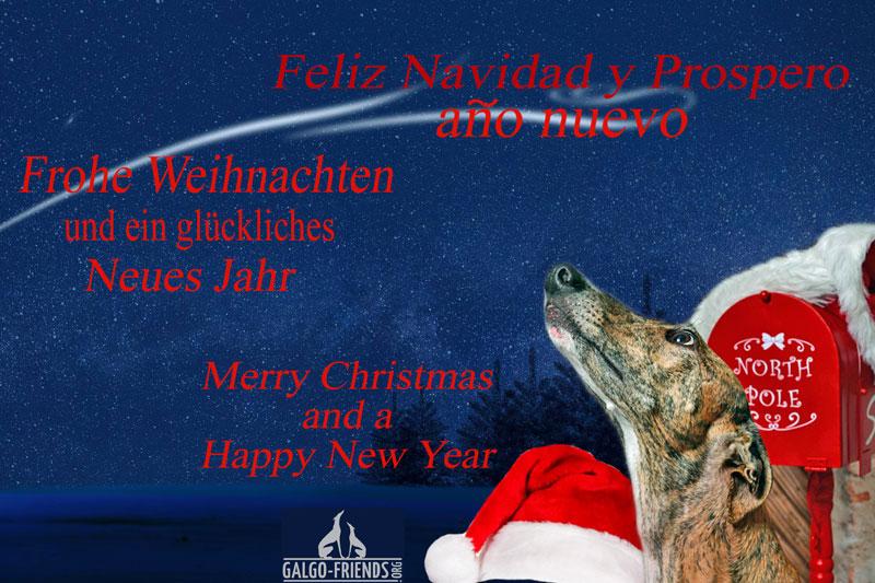 Frohe-Weihnachten-Bild111