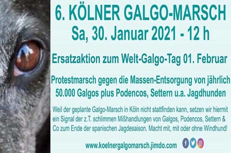 Galgo-Marsch_HP
