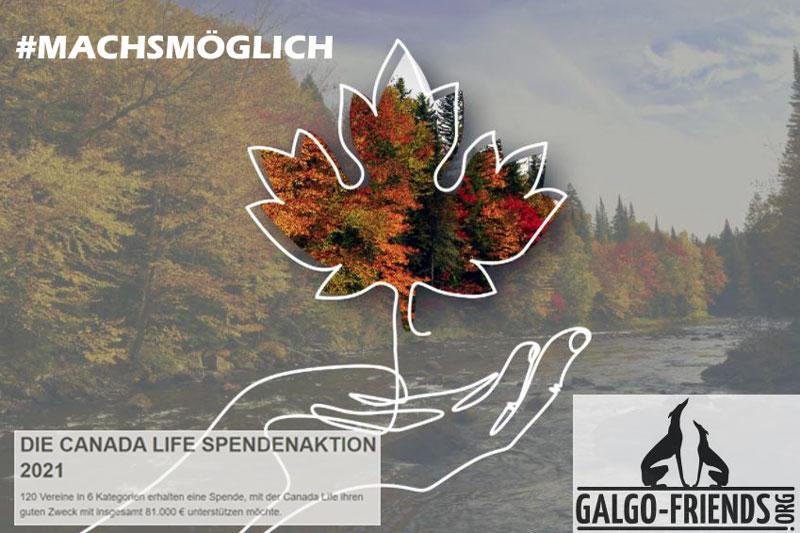 Canada_Life_machsmöglich