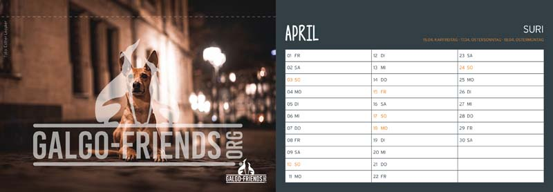 Galgo_Friends_Tischkalender_2022_April