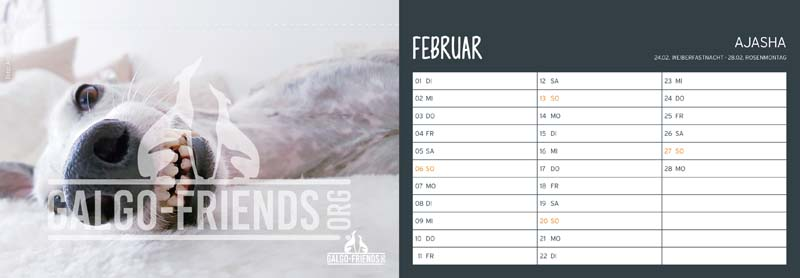 Galgo_Friends_Tischkalender_2022_Februar