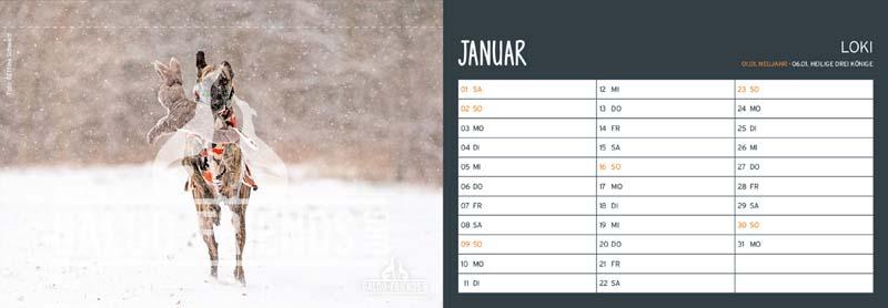 Galgo_Friends_Tischkalender_2022_Januar