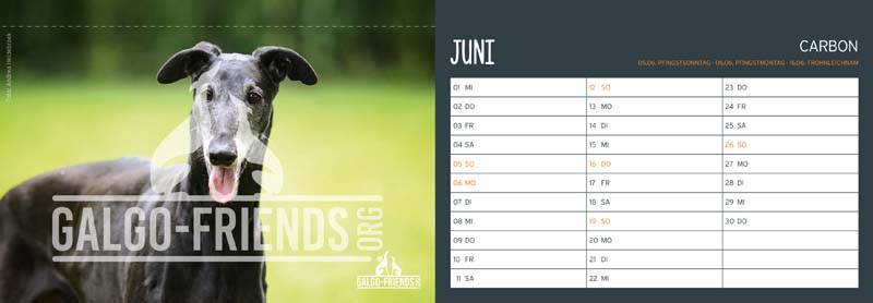 Galgo_Friends_Tischkalender_2022_Juni