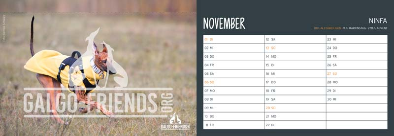 Galgo_Friends_Tischkalender_2022_November
