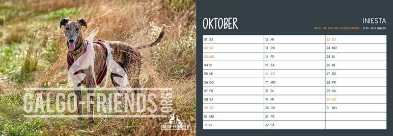 Galgo_Friends_Tischkalender_2022_Oktober