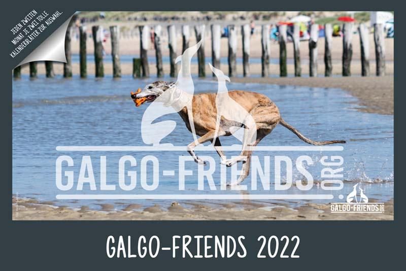 Galgo_Friends_Wandkalender_2022_1