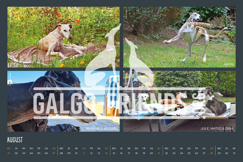 Galgo_Friends_Wandkalender_2022_13