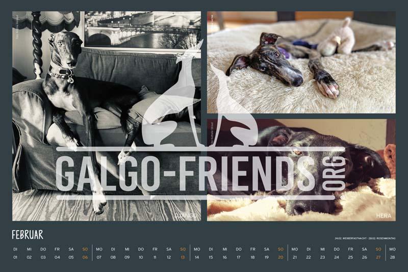 Galgo_Friends_Wandkalender_2022_4